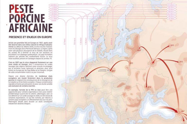 infographie-ppa-peste-porcine-africaine-europe-02